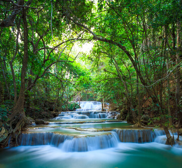 voda-stromy