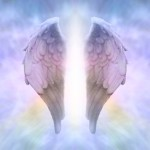 andel-kridla-nebe
